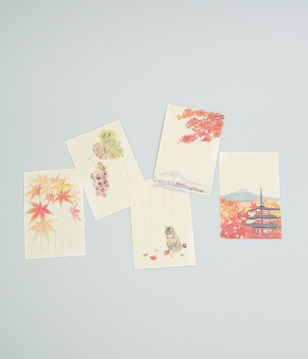 季節のはがき ぶどう 5枚セット(カラー1)