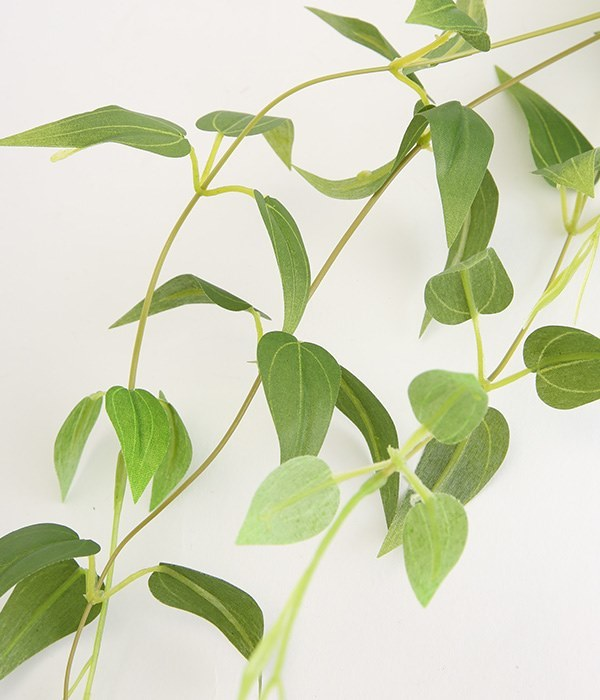消臭ハンギンググリーン2個セット(カラー1)
